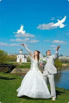 Білі голуби на весілля