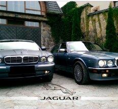 """Весільний кортеж """"Jaguar"""" !"""