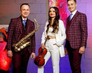 Музичний шоу-гурт Alfaband Project