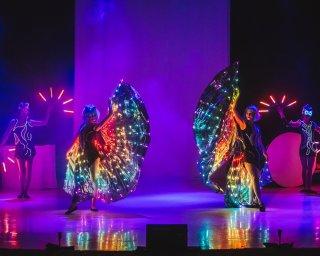 Світлове та фаєр-шоу Dragonfly